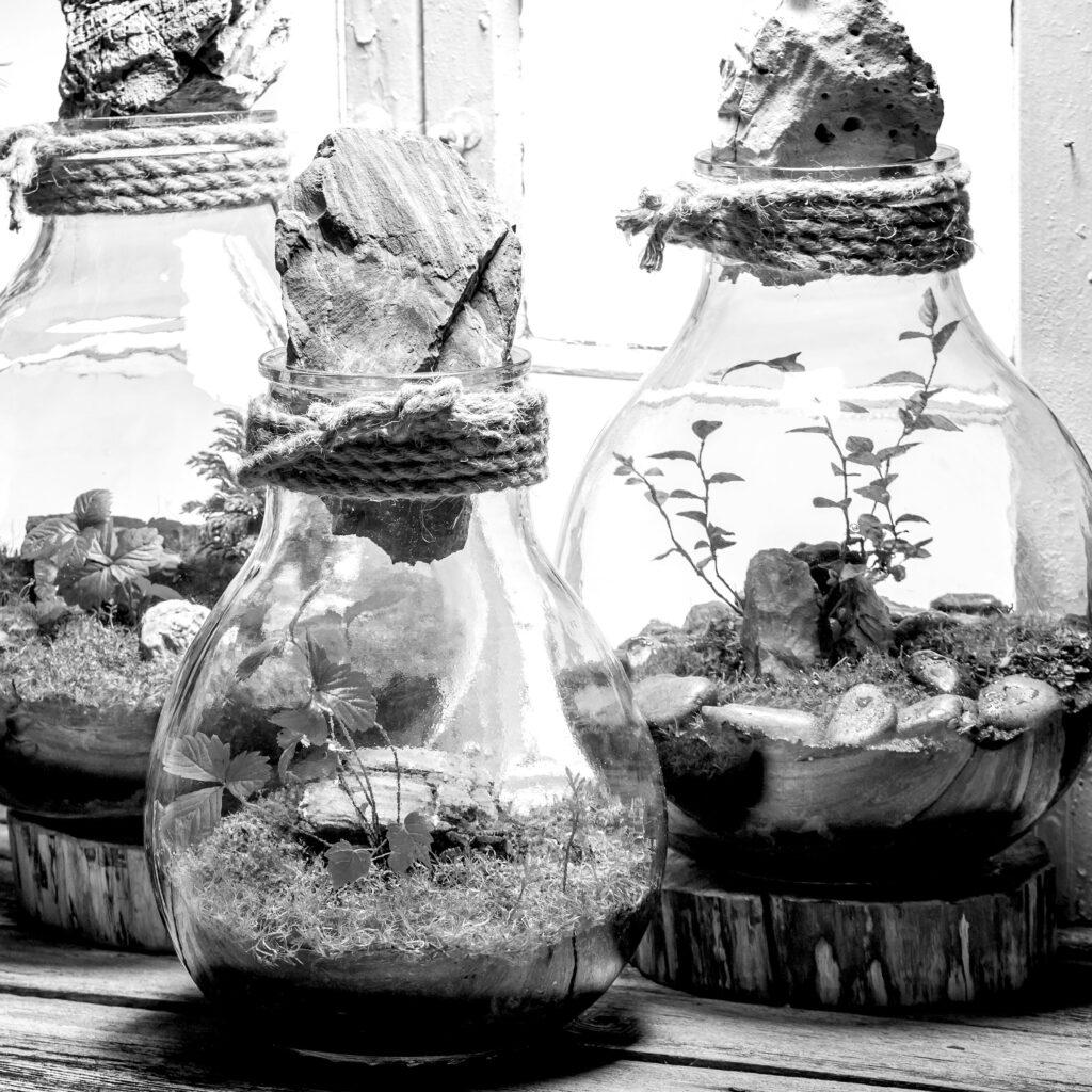 Brentford Glass Garden Workshop